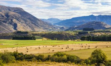 Services Overseas Investment Todd Walker lawyers Queenstown Wanaka 2